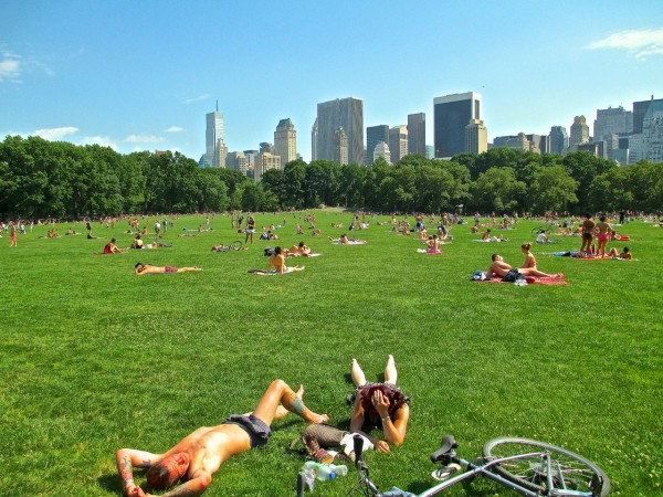 Central Park, Sheep Meadow, NYC