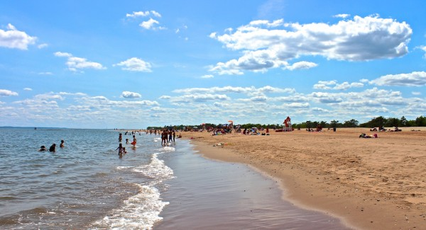 Beaches Dogs Staten Island